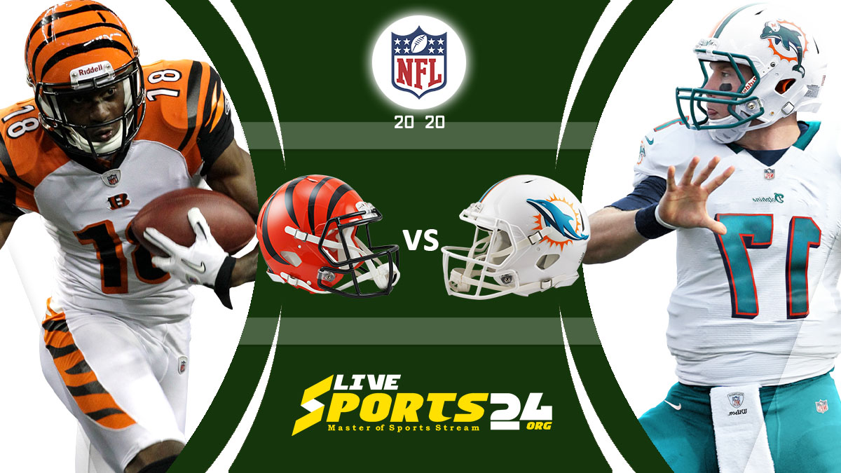 Bengals vs Dolphins Live: How to watch Cincinnati vs Miami live Prediction & odds
